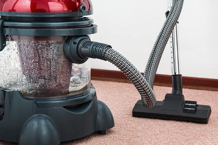 vacuum for carpet cleaning, steamer, shampoo, carpet cleaning service denton