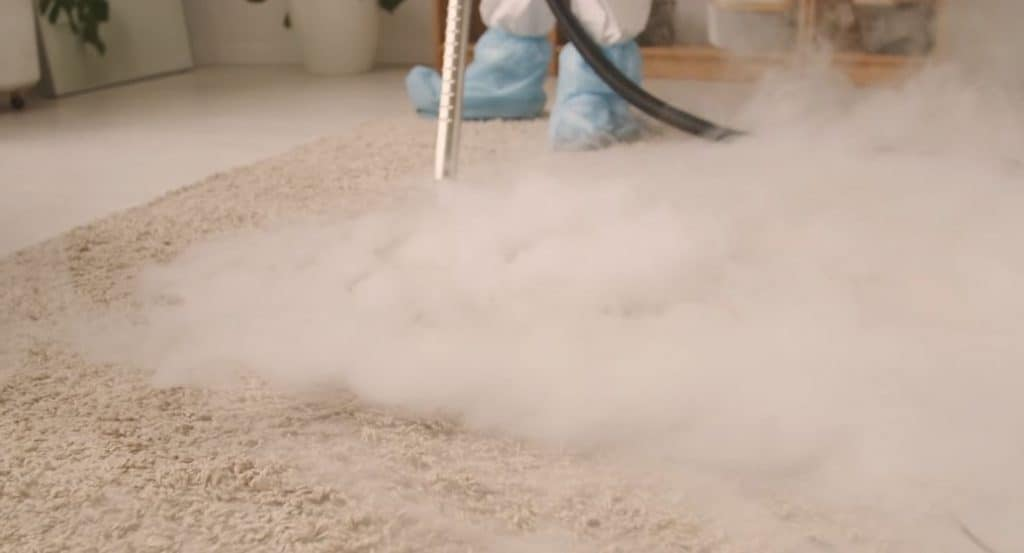 upholstery cleaning service professional couch cleaner sofa