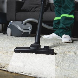 stain removal, pet hair cleaning, pet odor in carpet, best company for stain removal in carpets in denton tx